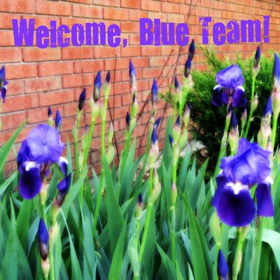 Welcome blue team
