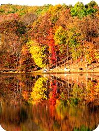 Penn_estates_highland_lake_foliage